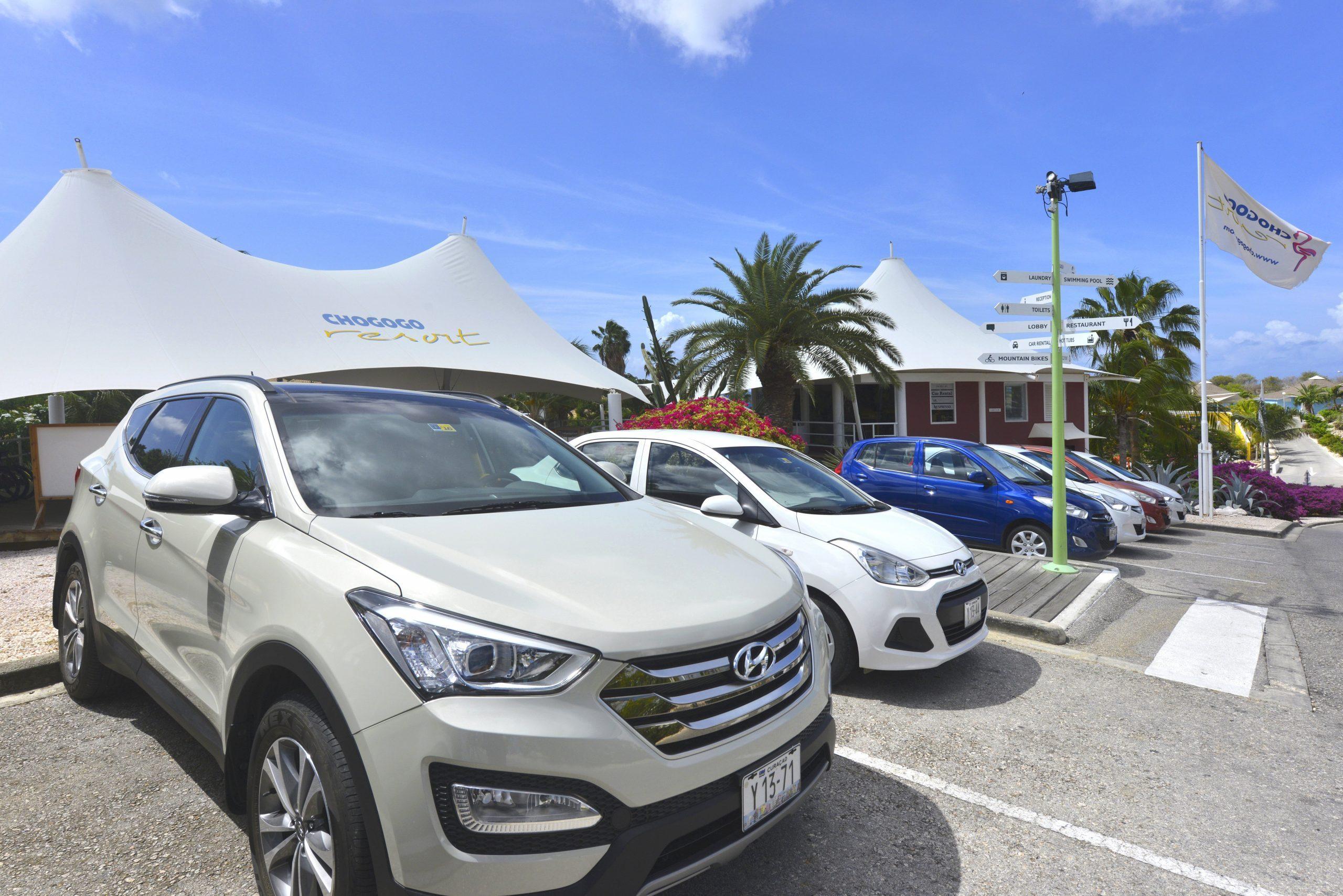 Chogogo autoverhuur service, met verschillende soorten auto's.